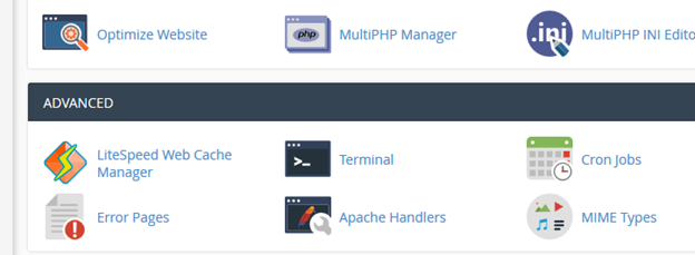 LiteSpeed Server - cPanel